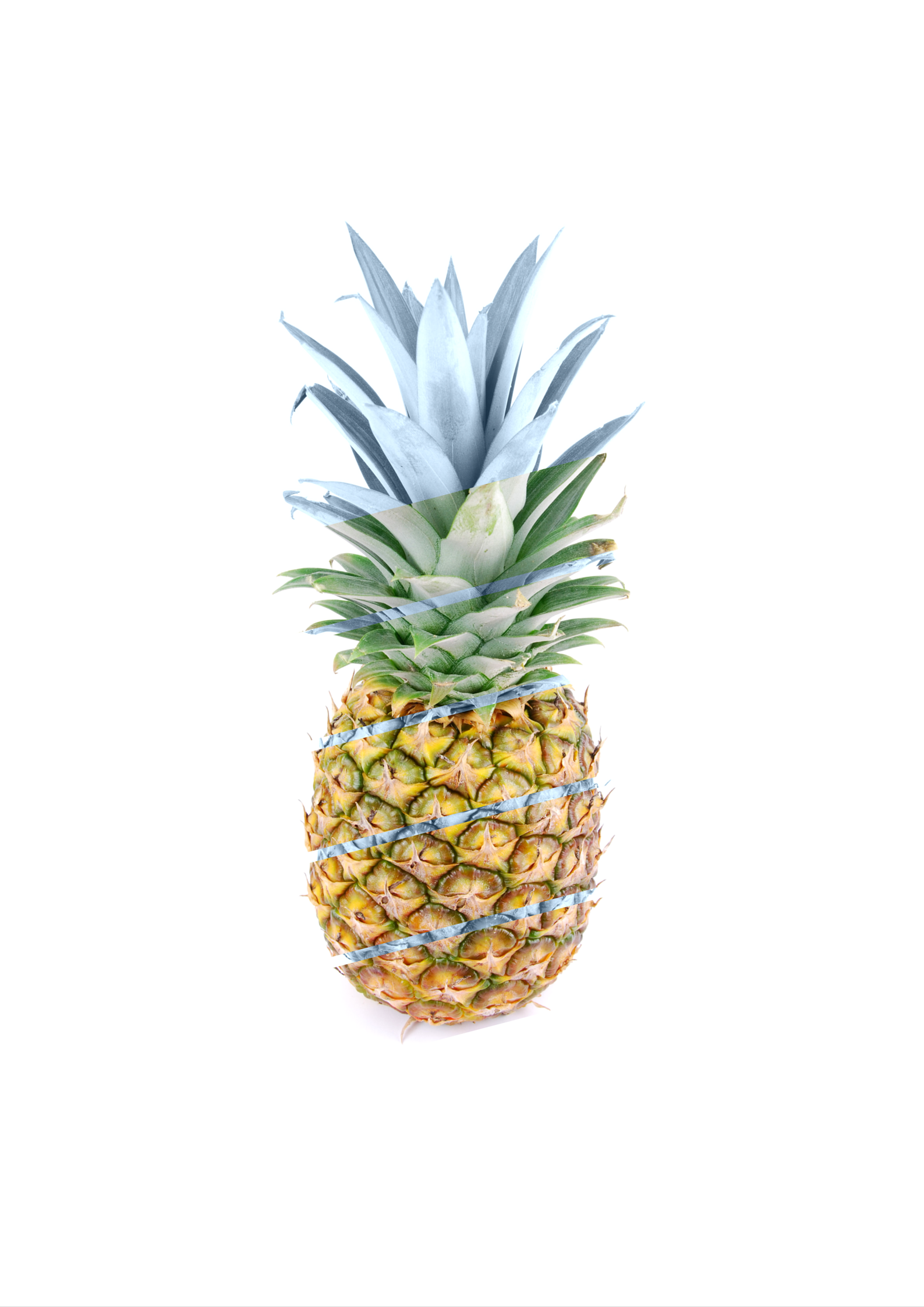 picture about Printable Pineapple referred to as Image Pineapple Printable Artwork - Casa Watkins Dwelling